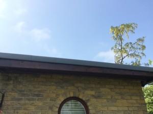 GRP Fibreglass Roofing, roofing, tenterden, RT Alkin, fibreglass, flatroof